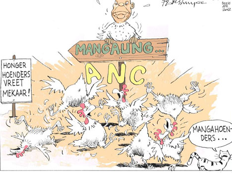 'Chickens of Mangaung': Africartoons.com