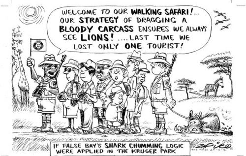 'Not So Smart, Chum!': Africartoons.com
