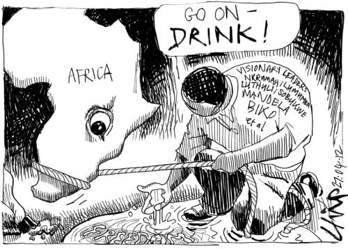 'You Can Take a Horse to Water...': Africartoons.com