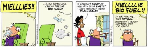 'Introducing the Biolfuel Lady': Africartoons.com