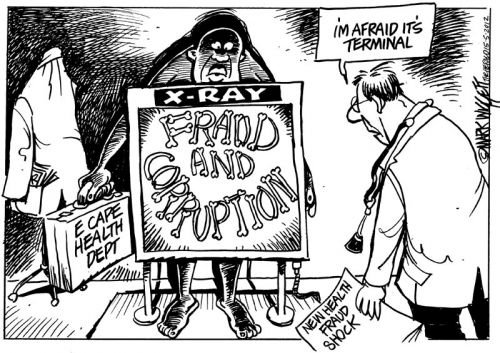 'Looking into E Cape Health': Africartoons.com