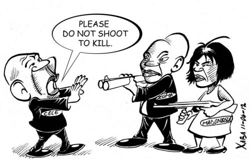 'Do Not Shoot to Kill': Africartoons.com