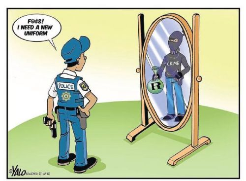 'A Poor Reflection': Africartoons.com
