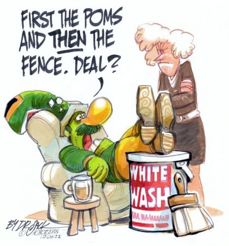 'Whitewash ': Africartoons.com