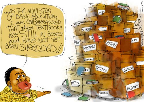 'A Shred of Evidence': Africartoons.com