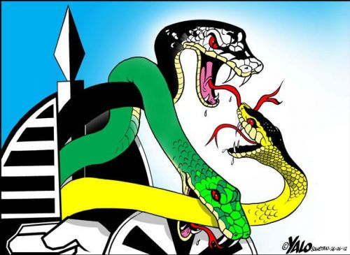 'Party of Snakes': Africartoons.com