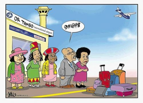 'Missed the Plane': Africartoons.com