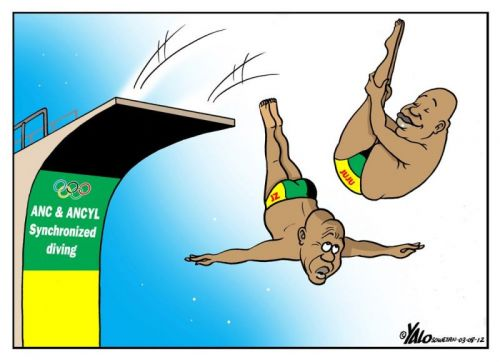 'Unsynchronised Diving': Africartoons.com