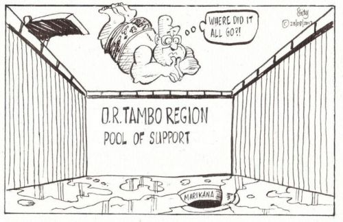 'Empty Pool of Support': Africartoons.com