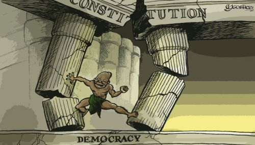 'Bringing Down the Constitution': Africartoons.com