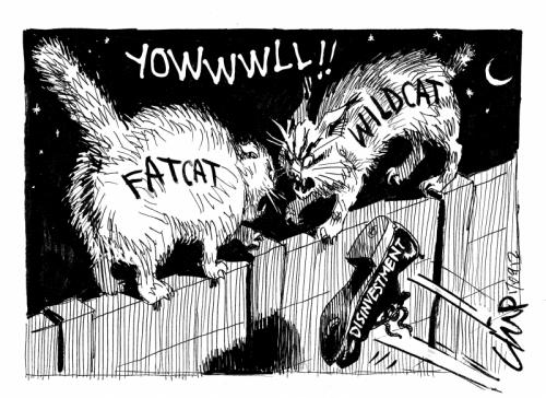 'Cat Fight ': Africartoons.com