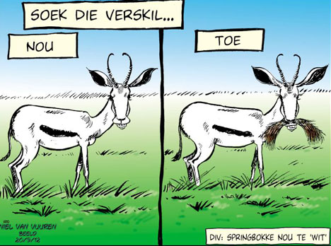 'Transformation in the Springboks': Africartoons.com