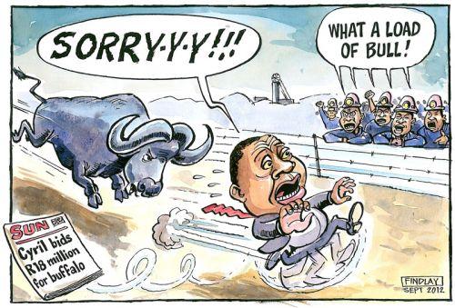 'Incorrigibull Cyril': Africartoons.com