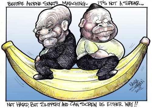 'Going Bananas': Africartoons.com