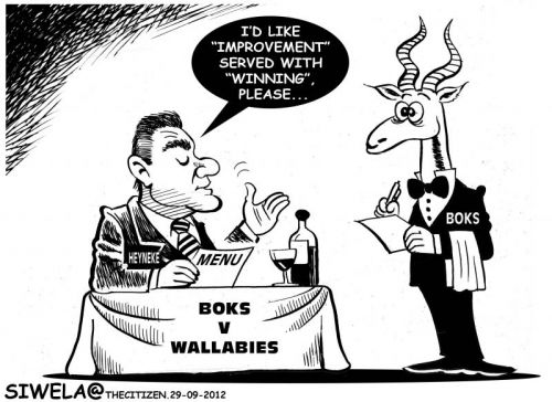 'Meyer Orders a Better Game': Africartoons.com
