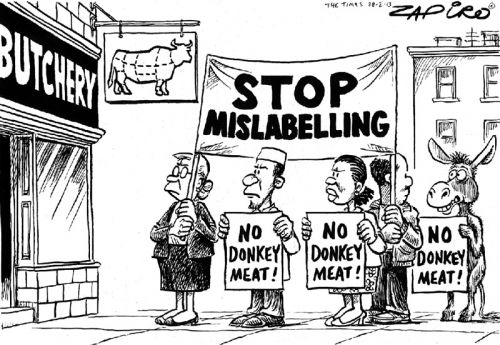 '20130228_zapiro': Africartoons.com