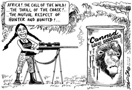 '20131120_zapiro': Africartoons.com