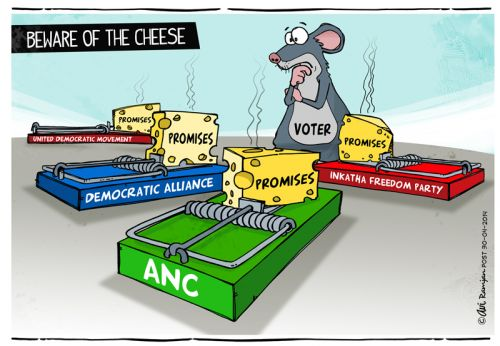 'Election Cheese': Africartoons.com