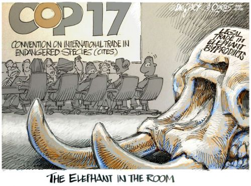 '20161006_Dr Jack and Curtis': Africartoons.com