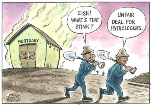 '20170619_findlay': Africartoons.com