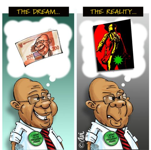 'Speared Reality Check': Africartoons.com