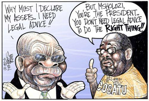 'Declare your assets!': Africartoons.com