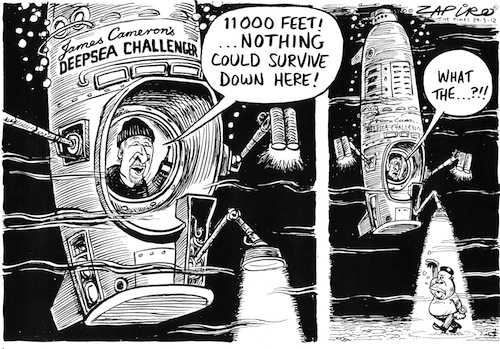 Zapiro puts a foot in it!