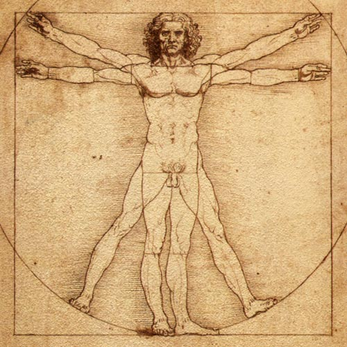 Leonardo's Vitruvian Man